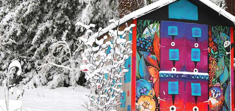 A rare snowfall in Portland and a new WHINE glass auction coming soon!