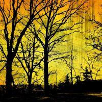 Mroczne martwe drzewa żółte tło