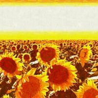 Słoneczniki pole słoneczników impresjonizm malarstwo