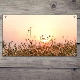 Najaar zon tuinposter