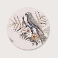 Muurcirkel papegaai