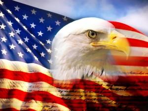 Terry-Longpre_american-flag2