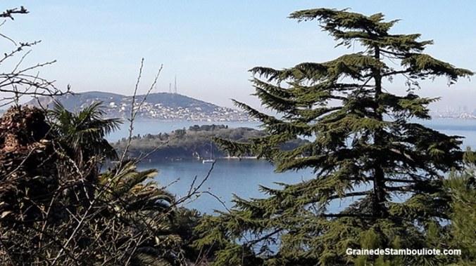 Les îles aux Princes à Istanbul, île de Heybeliada, vue sur Burgazada