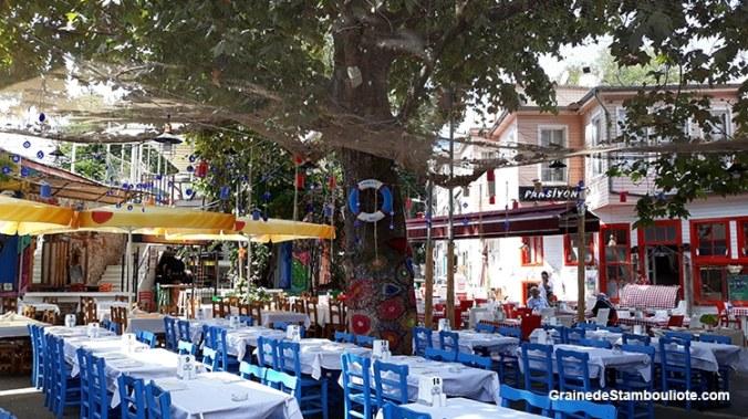 Les îles aux Princes à Istanbul, île de Kinaliada, restaurants de poissons, Meyhane, grec