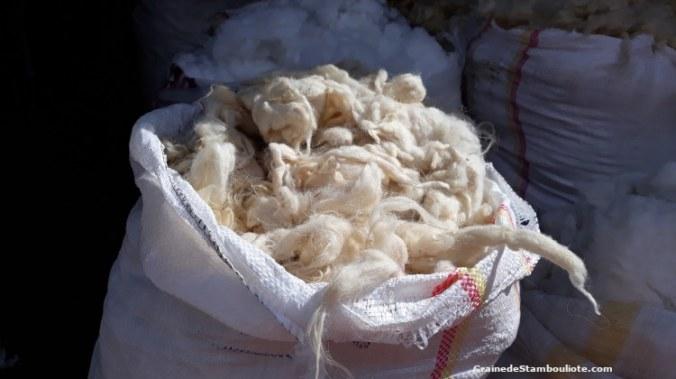 laine mohair, de chèvre angora à Ankara, Turquie
