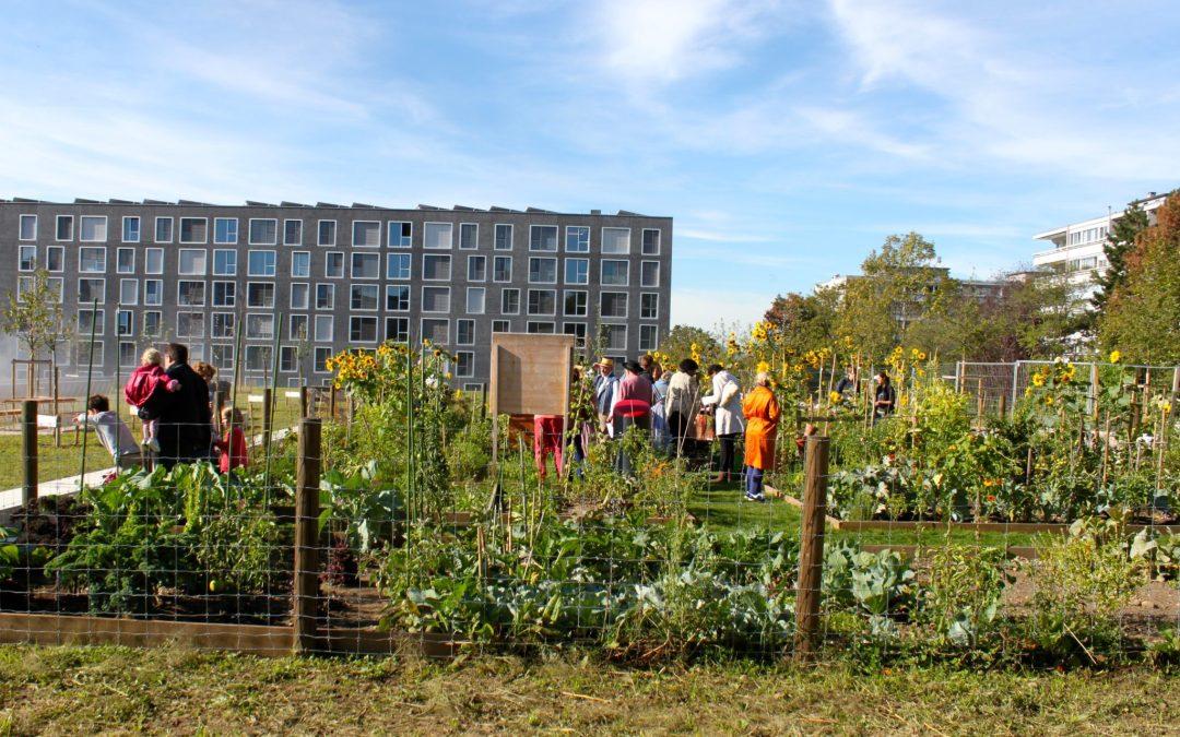 Conception et mise en place de nombreux potagers urbains de façon participative, Suisse romande