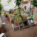 jardin St Savournin