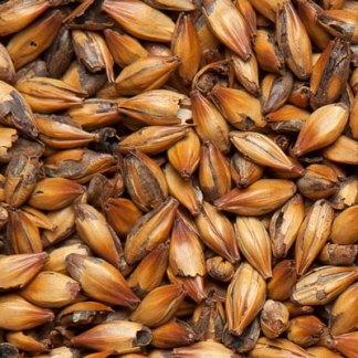 Карамельный солод 250 Курский солод
