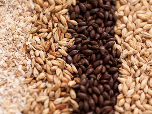 Brewers-Grain