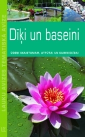 384x279__TA_Diki_baseini_original.jpg