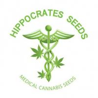 Hippocrates seeds