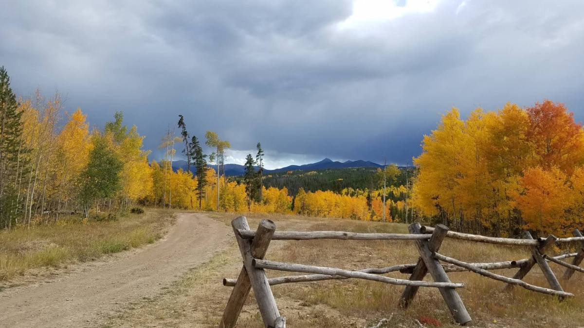 Fall Colors Guided Hike – with Naturalist Katie Bode