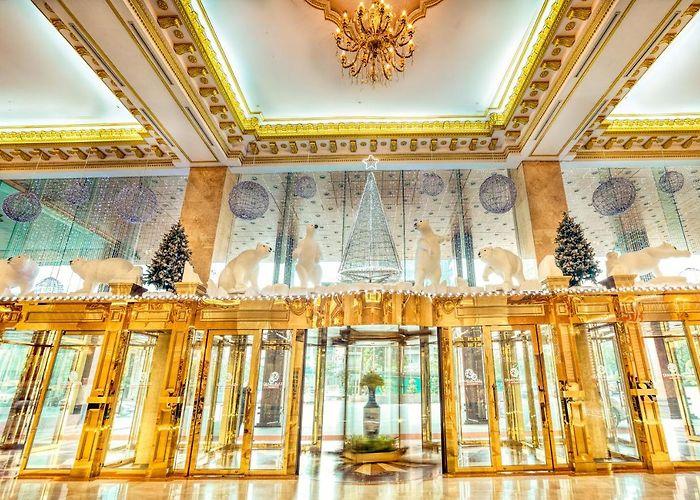 grand plaza hanoi hotel hanoi