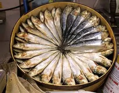 salted herring in a barrel