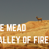 Episode 5: Lake Mead & Valley of Fire, Nevada