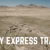 Episode 31: Wild Horses & Pony Express Trail | RV Utah boondocking travel