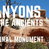 Episode 100 Canyons of the Ancients | Colorado RV travel camping