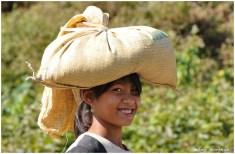 Birma-19