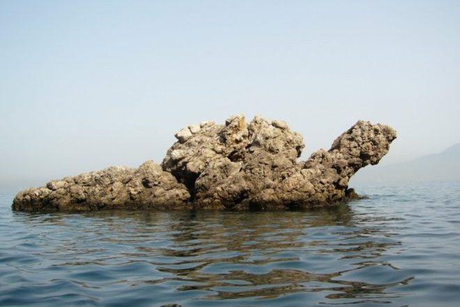 spiaggia tartaruga 2