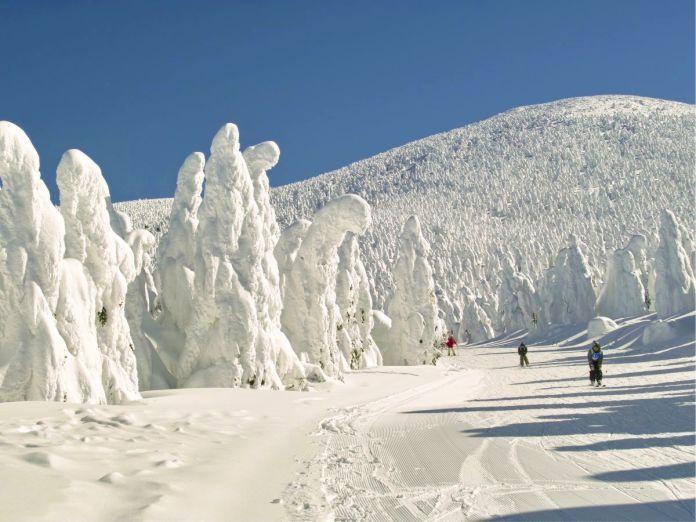Estacion de esqui Yamagata Zao Onsen - 29 de los paisajes más surrealistas de nuestro hermoso planeta