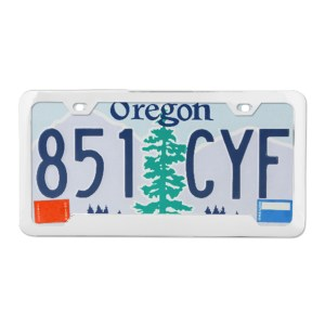 Plain 2-Hole License Plate Frames with Center Raised
