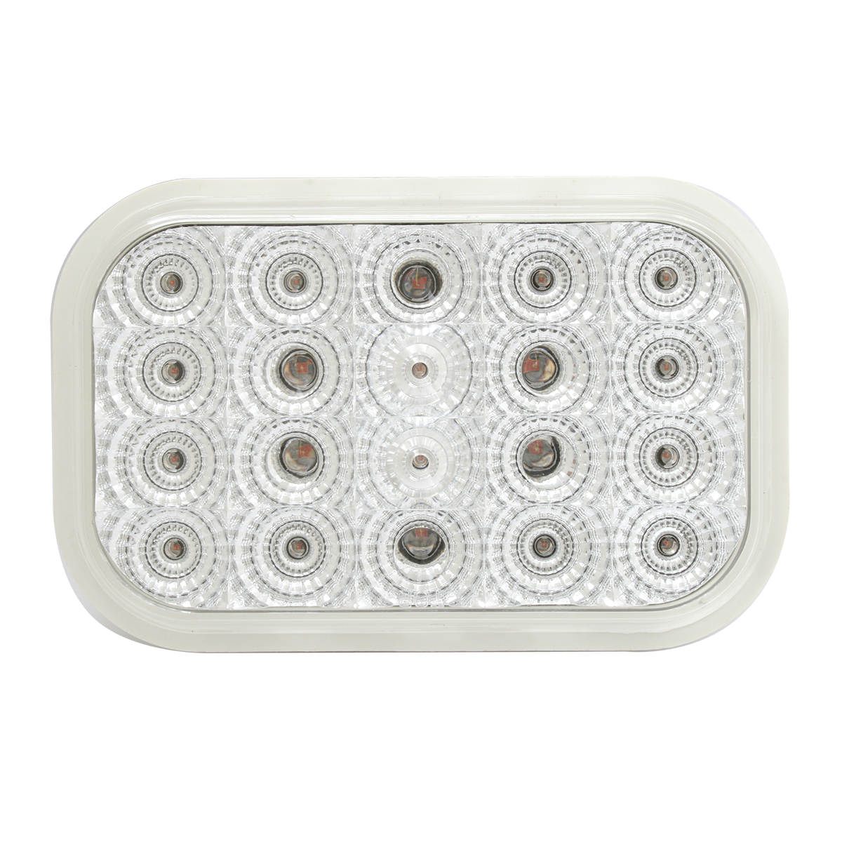 Rectangular Spyder LED Light in Clear Lens
