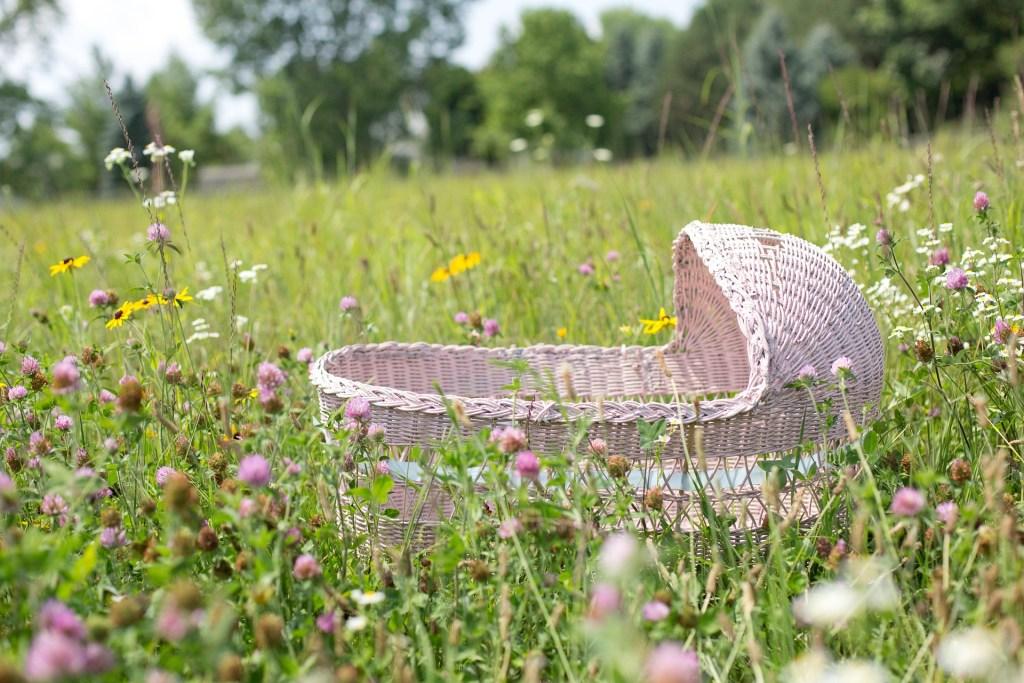 berceau dans l'herbe