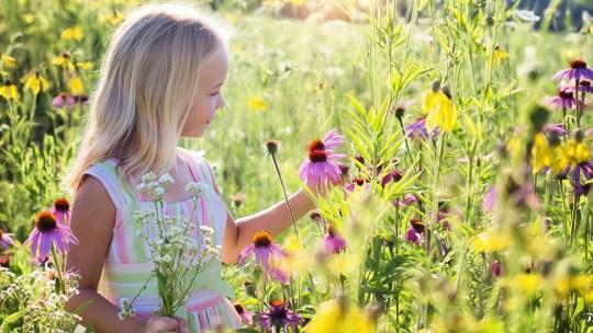 L'écologie enseignée aux enfants