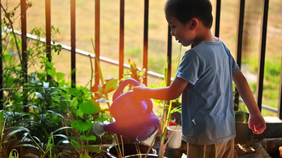 Jardiner avec les enfants : entre apprentissages et moments de partage