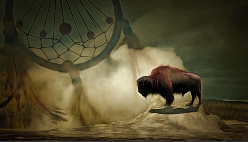 Un Buffalo et un attrape rêve