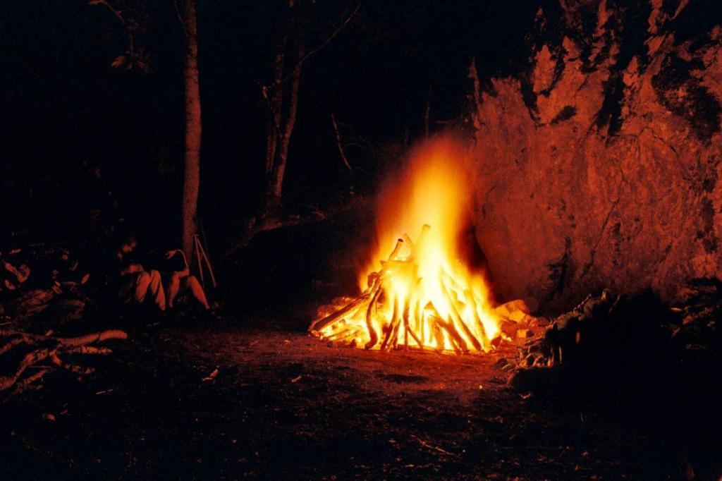 Un feu au milieu des bois
