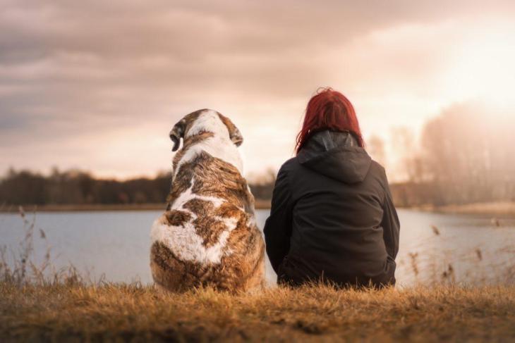 Un homme et son chien au bord d'un lac