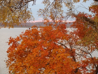 Find The Best Fall Colors At Grand Lake