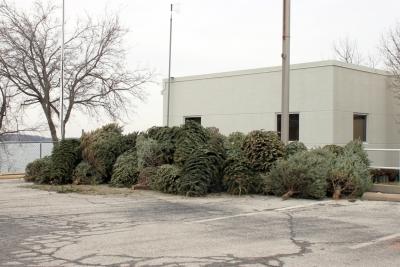 christmas_trees_crappie_habitat
