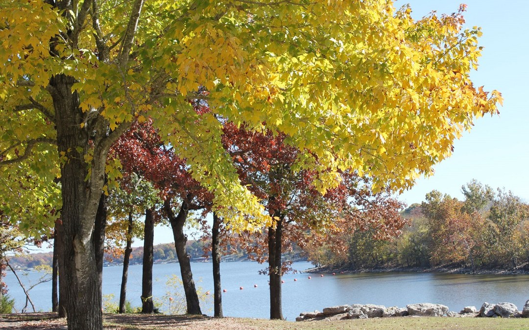 Grand Lake FAll Foliage