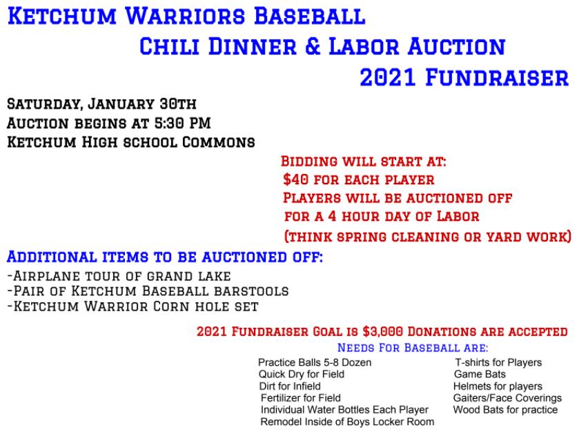 Baseball Labor Auction