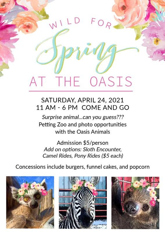 Wild For Spring at The Oasis