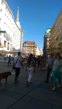 city walk vienna (4)