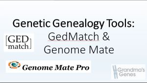 Genetic Genealogy Tools ,GEDmatch and Gneomate P