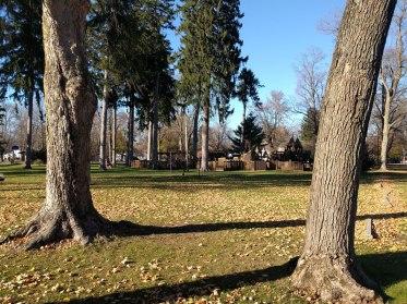 lawrence_park
