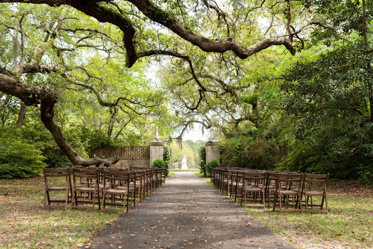 Ceremony location under the oak trees - Brookgreen Gardens