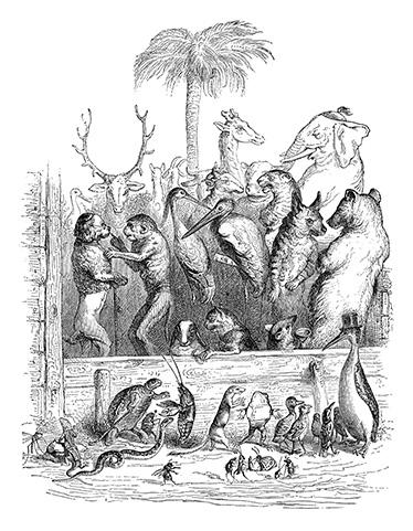 grandville-animals-009-internet-trolls