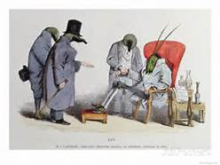 grandville-animals-406-insects-are-being-mislaid-or-not
