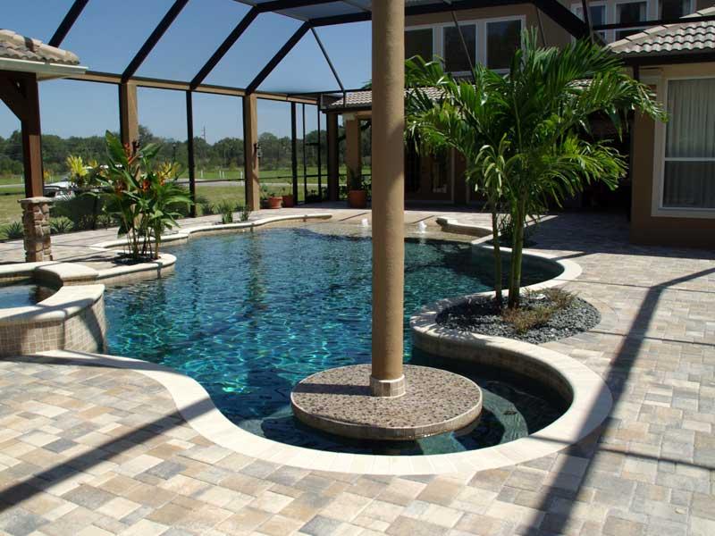 carrollwood pool builder contractor