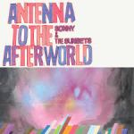 antenna-afterworld