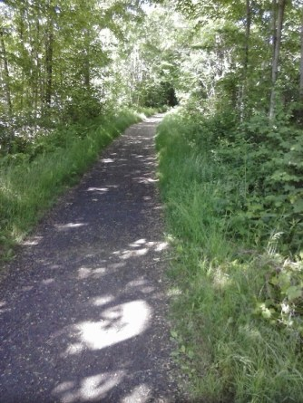 Northern Rail Trail, Enfield, NH: wide and shady