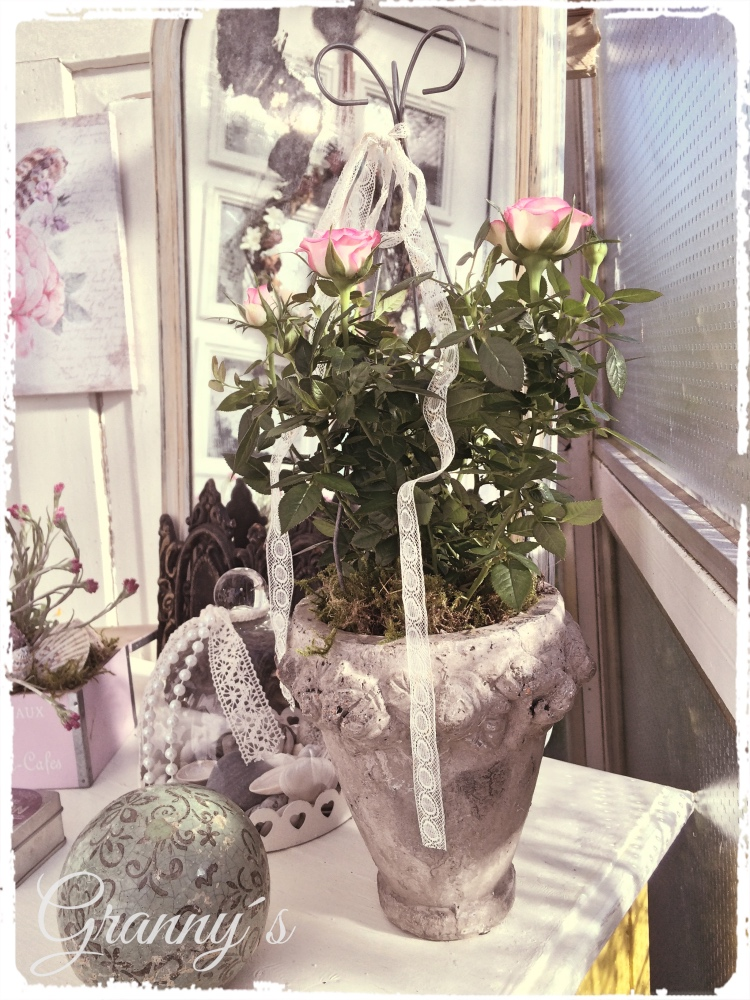 Shabby-Rose Neues vom Hauseingang