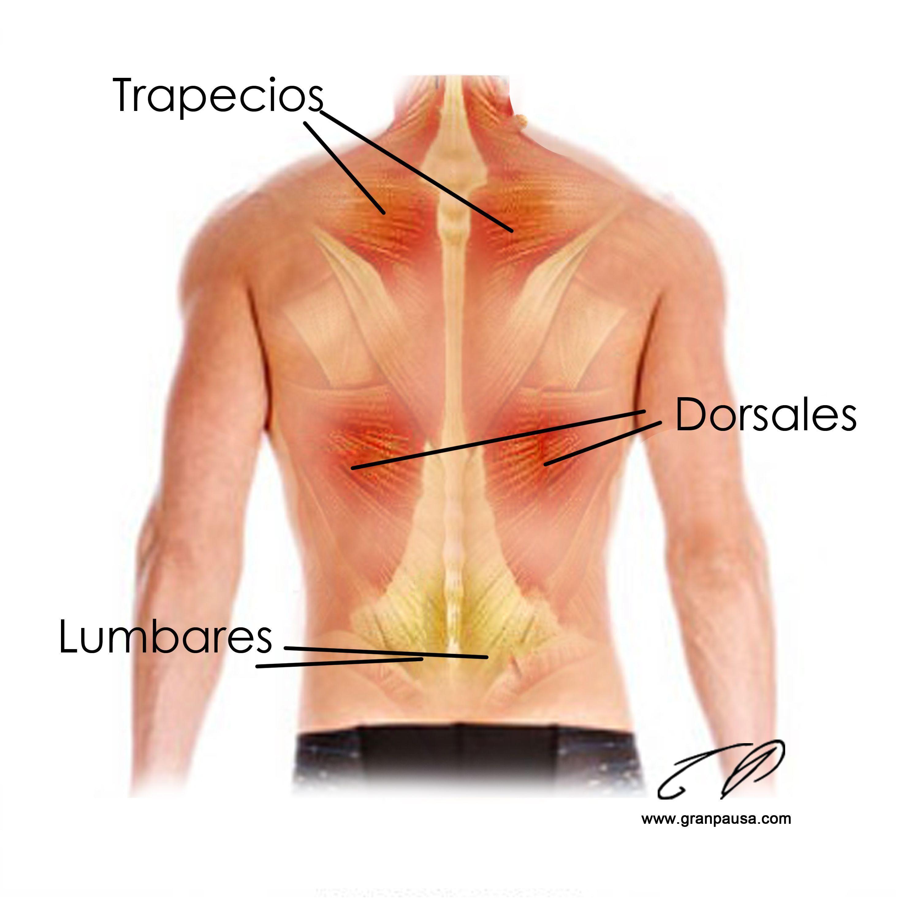 La compresa que calienta al dolor en la espalda
