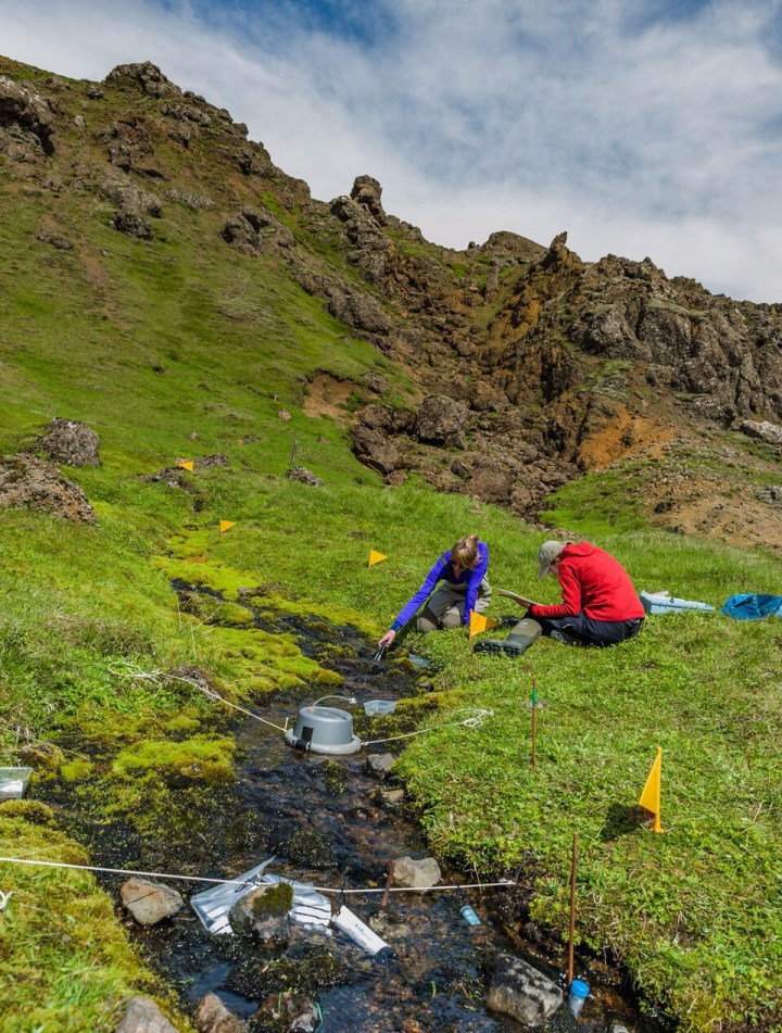 Measuringecosystem processesassociated with the carbon and nitrogencycle in Iceland.