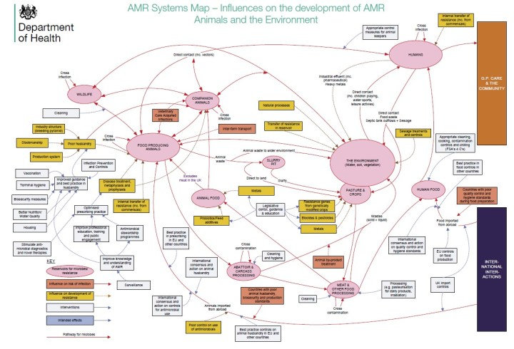 Figure 1 AMR systems map - This map shows the influences on the development of antimicrobial resistance in humans, animals and the environment